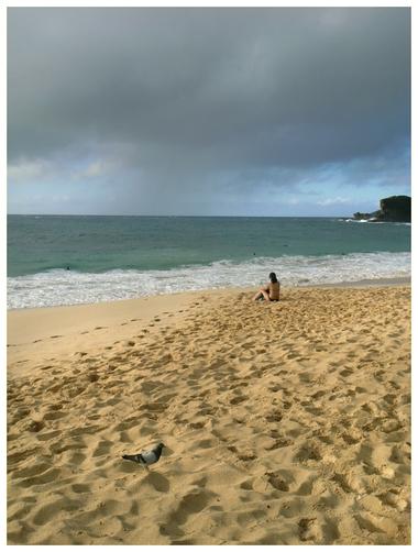 Hawaii005