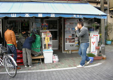 Photobychotoku500